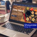 Web showcase Eco_Asiepro